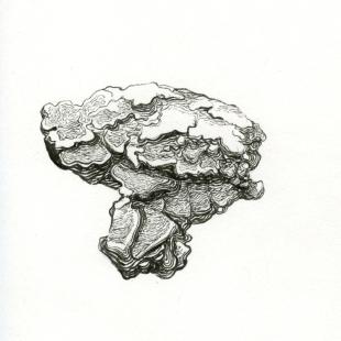 rock 04:09